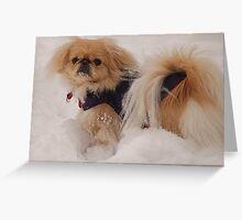 I am a snow dog Greeting Card