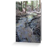 STREAM OF LIFE Greeting Card