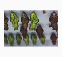 Swallowtail Chrysalises  Kids Tee
