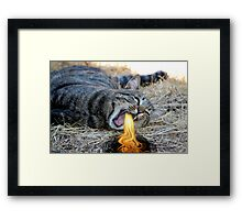 My Cat Breathes Fire! Framed Print
