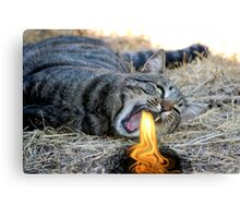 My Cat Breathes Fire! Canvas Print