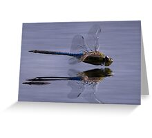 The Art Of A Dragonfly Greeting Card