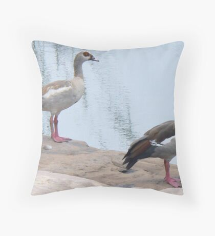 Egyptian Geese At The Water Hole Throw Pillow