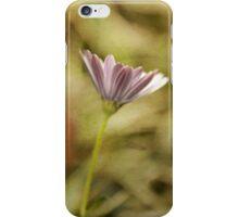 Lone purple daisy botanical photography iPhone Case/Skin