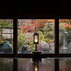 Travels in Japan by Skye Hohmann