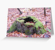 mossy stump Greeting Card