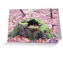 mossy stump Greeting Card