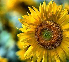 Sunflower by Ganz