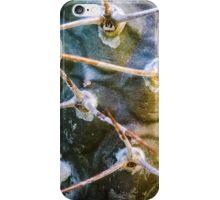 Brown Cactus Closeup iPhone Case/Skin