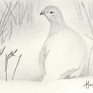 ACEO Snow Shadows - Ptarmigan by John Houle