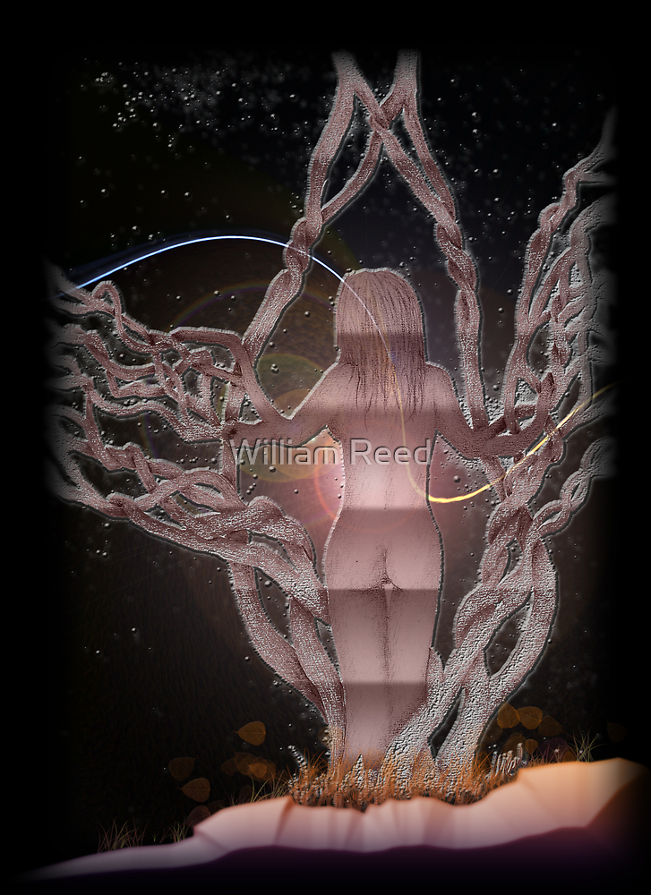 Birth of Eve (colorized) by William Reed