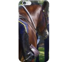 Gallant Steed V iPhone Case/Skin
