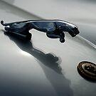 Jaguar 120 XK Bonnet Mascot close-up 1 by ragman