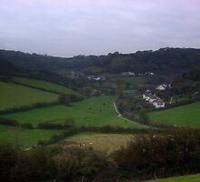 A Broad look across Branscombe by ShutterMole