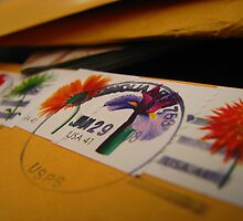 Beauty in postage by kaylarenee