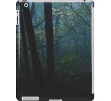 Moonglade iPad Case/Skin