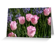 Tulips ~ Dancing in the Sunlight Greeting Card