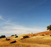 Golden landscape by epsylonlyrae