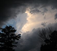 Storm on the way by Laurie Rohland
