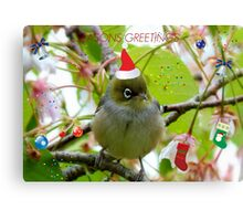 Where Is The Christmas Party? - Silver-eye! - NZ  Canvas Print