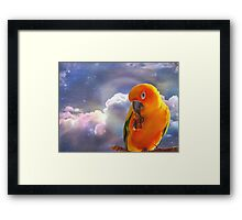 I'm Your Sunshine On A Cloudy Day...-Sun Conure - NZ Framed Print