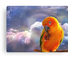 I'm Your Sunshine On A Cloudy Day...-Sun Conure - NZ Canvas Print