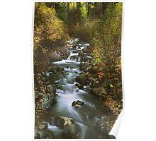 Brush Creek Poster