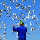 Experience Life In 3D! - Seagulls - NZ by AndreaEL