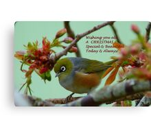 Special & Beautiful - Christmas Greeting Card - NZ Canvas Print