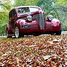 She Stands Out In Autumn Leaves! - Hot Rod Association - NZ by AndreaEL