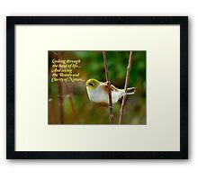 Looking Through The Haze Of Life.... - Silver-Eye - NZ Framed Print