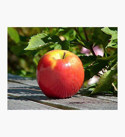An Apple... - NZ Photographic Print