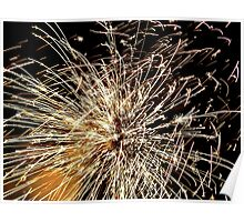 Pyrotechnic Mania - Fire Works - NZ Poster