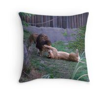 rough housing Throw Pillow