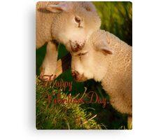 Happy Valentines Day - Lambs - NZ Canvas Print