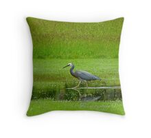 I'm Saving The Drowning Worms!! - White-faced Heron - NZ Throw Pillow