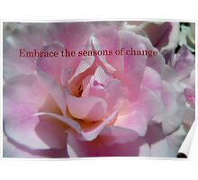 Embrace The Seasons Of Change - Rose - NZ Poster