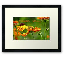 Thank you - Black Eyed Susan - Cone Flower - NZ Framed Print