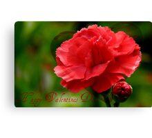 Happy Valentines Day! - Carnation - NZ Canvas Print