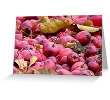 Fallen Crab-apples - Gore Southland NZ Greeting Card
