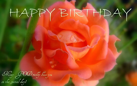 Happy Birthday - Rose Bloom - NZ by AndreaEL