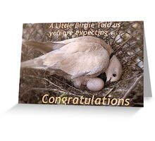 A Little Birdie Told Us You Are Expecting - Congratulations - NZ Greeting Card