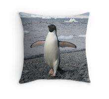 Proud Penguin Throw Pillow