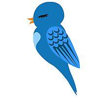 Adorable single cartoon bird Photographic Print