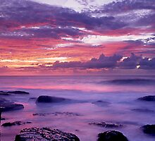 Terrigal Dawn by Matt  Lauder