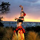 Flamenco At Sunset by garyt581