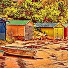 Boatsheds  by wallarooimages