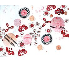 Planets of fabrics and lace. Photographic Print