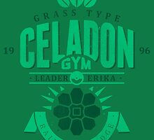 Celadon Gym by Azafran