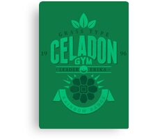 Celadon Gym Canvas Print